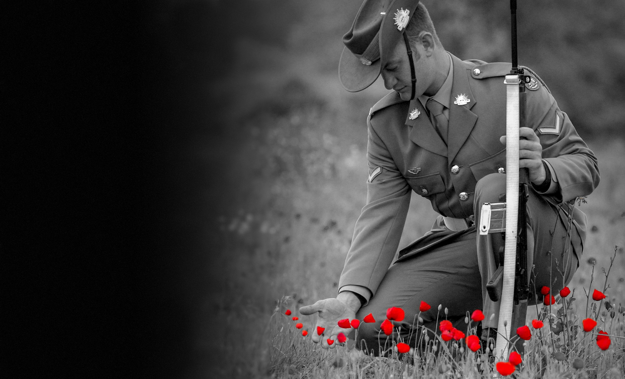 Solider kneeling in a field of red poppies